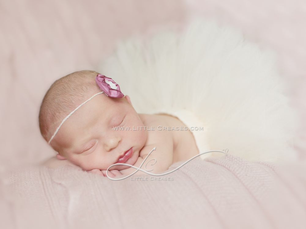 Leicester_newborn_photographer_Little_Creases_6_