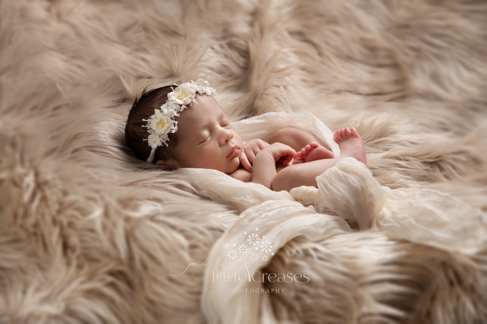Little Creases Newborn Photography Laiecester _104_jules-9501